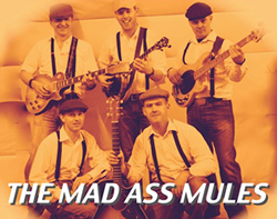 Mad Ass Mules